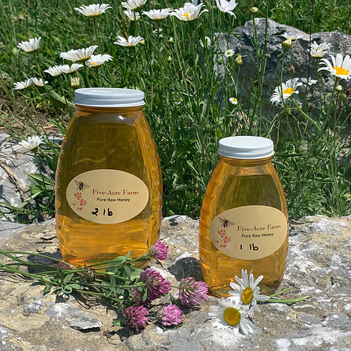 Pure Raw Wildflower Honey - 1 pound jar