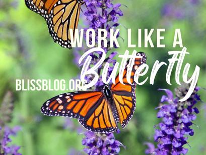 Work Like a Butterfly