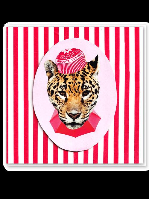 Popcorn Leopard