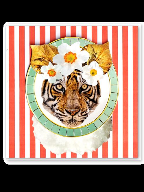Overdressed Tiger