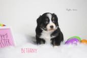 Bethany.8.JPG