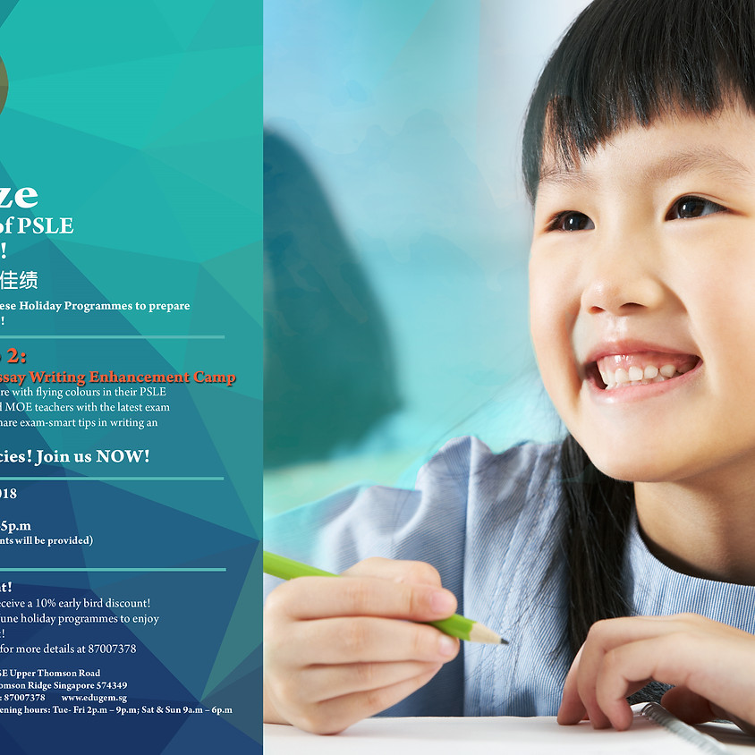 PSLE Chinese Essay Writing Enhancement Camp