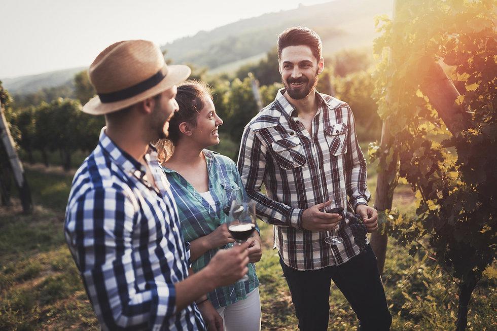 Tilba_Valley_friends_in_vineward.jpg