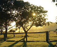 Oakleigh_Farm.jpg