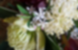 Vibrant Flowers white warathas.png