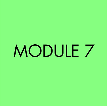 Moulage Niveau I