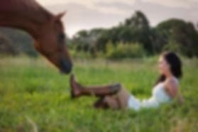 Sunshine Coast Horse Photographer