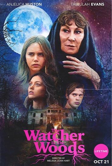 Watcher In The Woods (Film)