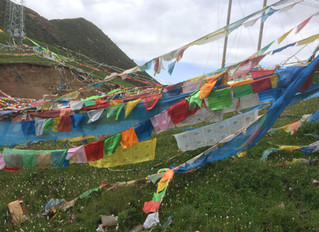 Back from Amdo