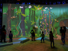 Helping the New York Hall of Science transform STEM education