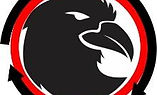 Raven -investor deck - 2021 02 26 - w_o.