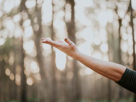 Meditar y empaparse de la cultura del yoga