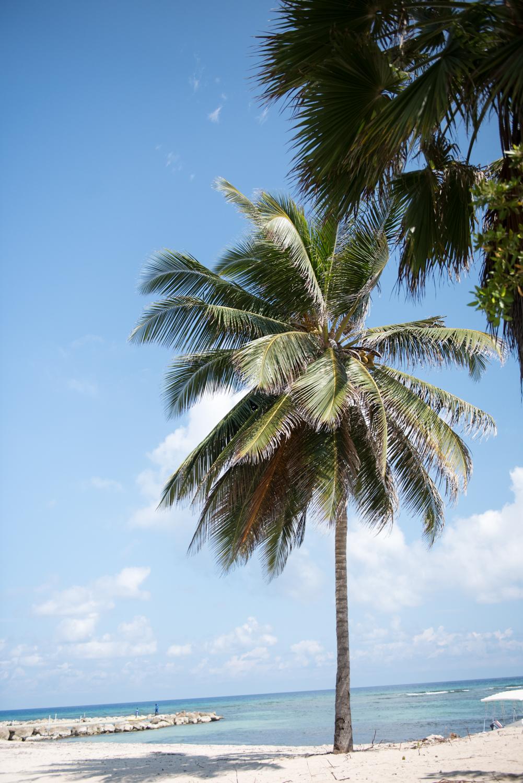 SylvieGil-0002-Caribbean, destination, Jamaica, photography, tropical, wedding