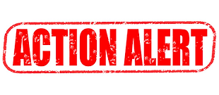 action alert.png