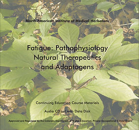 Fatigue-Front-cover.jpg