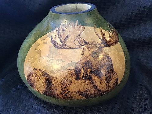 Bull Moose Reclining (original size)