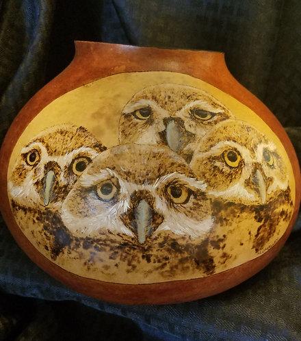 Burrowing Owlette Family
