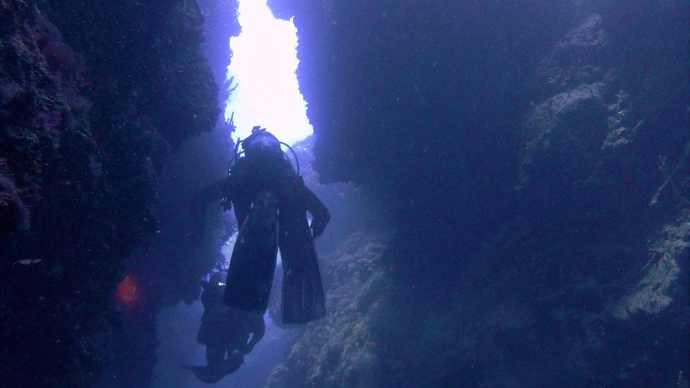 10 fun dives