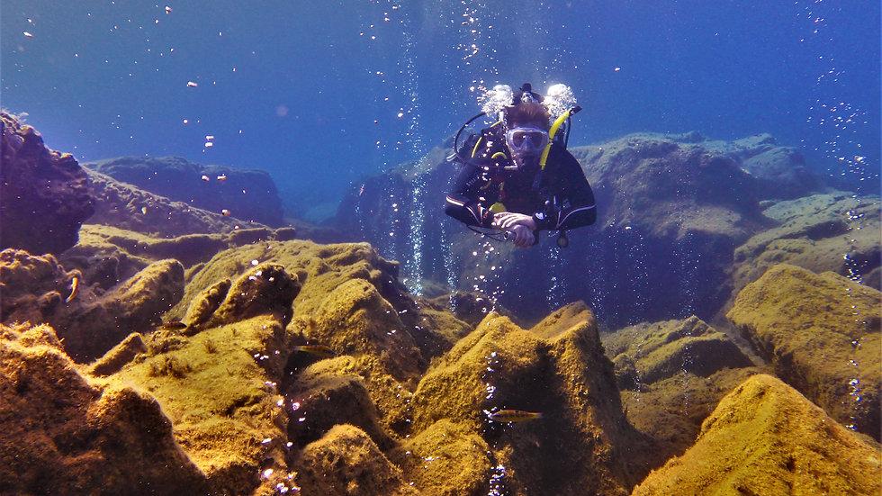 2 Fun dives