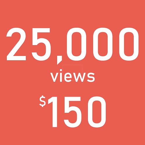 25,000 YouTube Views