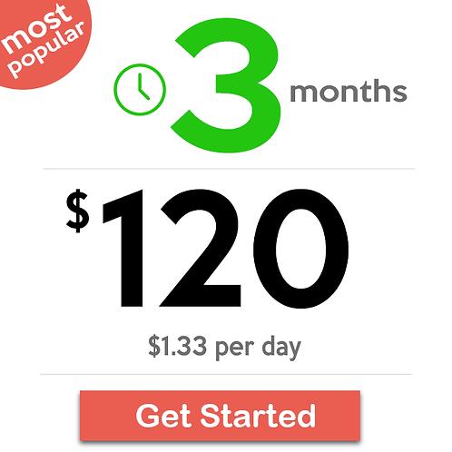 3 Months Basic Plan
