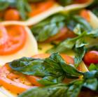 Frische Tomaten und Käse
