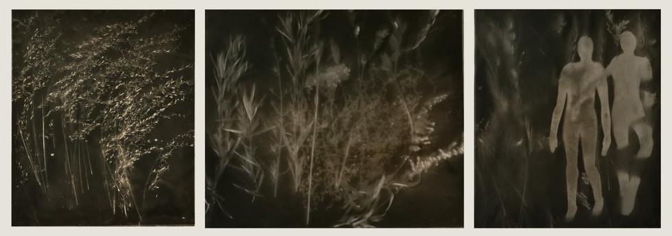 Nightwalk (triptych)