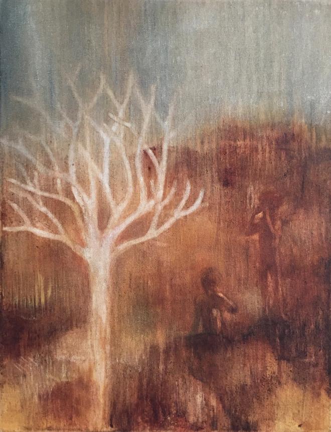 Vanishing Kokerboom