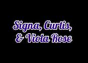 Signa Curtis Viola script-shadow.png