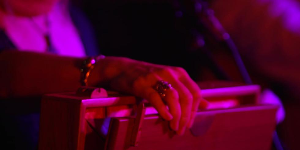 OmTara Portland House Concert