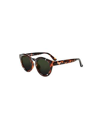 Gafas de sol GROOVY - Modelo NOIX