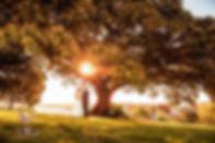 NCweddingsamples008.jpg