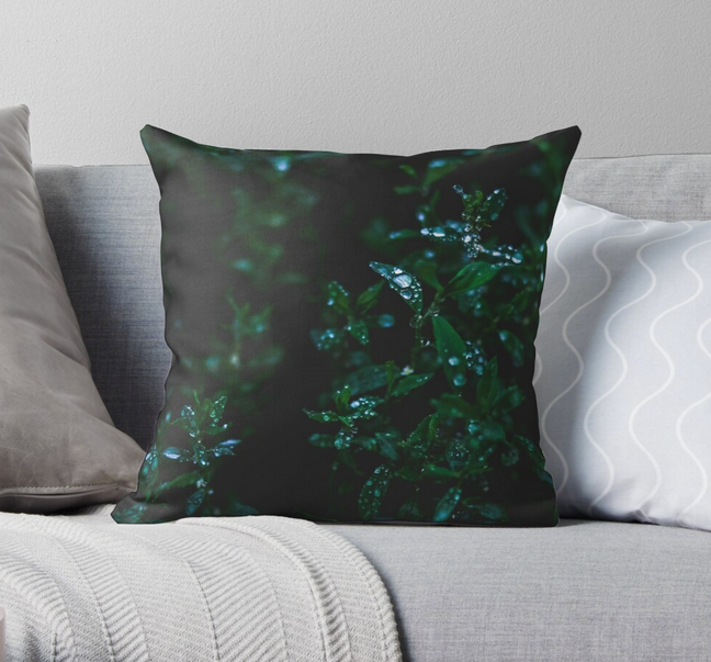 In The Valley Throw Pillow