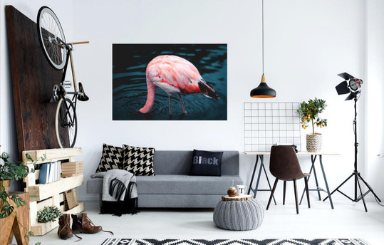 Head In The Water Canvas Print