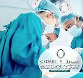 Cedars Jebel Ali