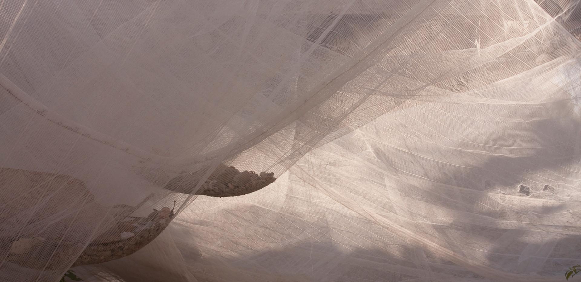 Manta Branca #5