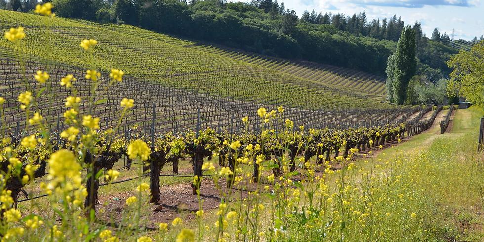 Terre Rouge & Easton Wine Tasting