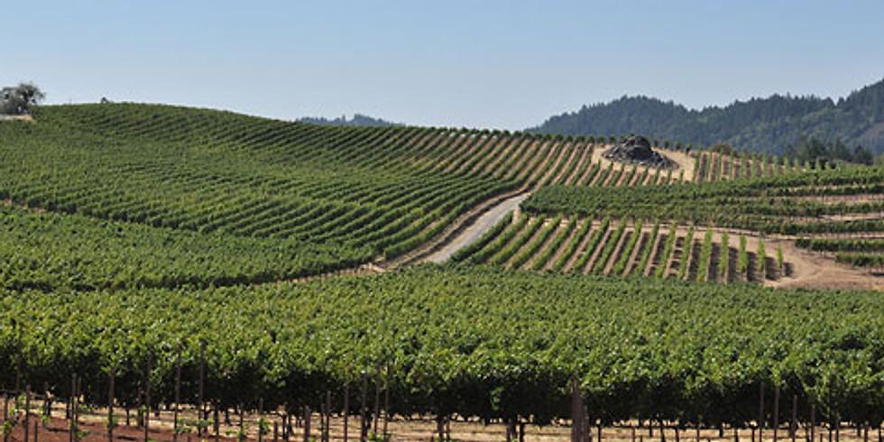 Meet the Winemaker - Hobo Wines
