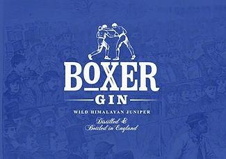 boxer-gin-2_orig.jpg