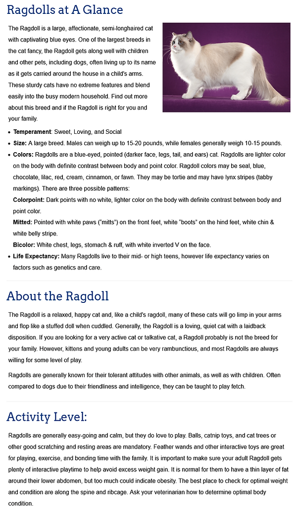Screenshot_2021-05-05 The Ragdoll Breed.