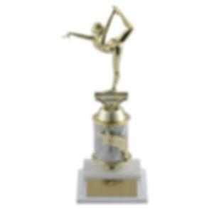 Gymnastics award.jpg
