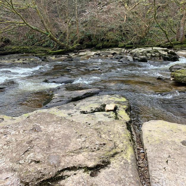 Kirkby Stephen River Eden