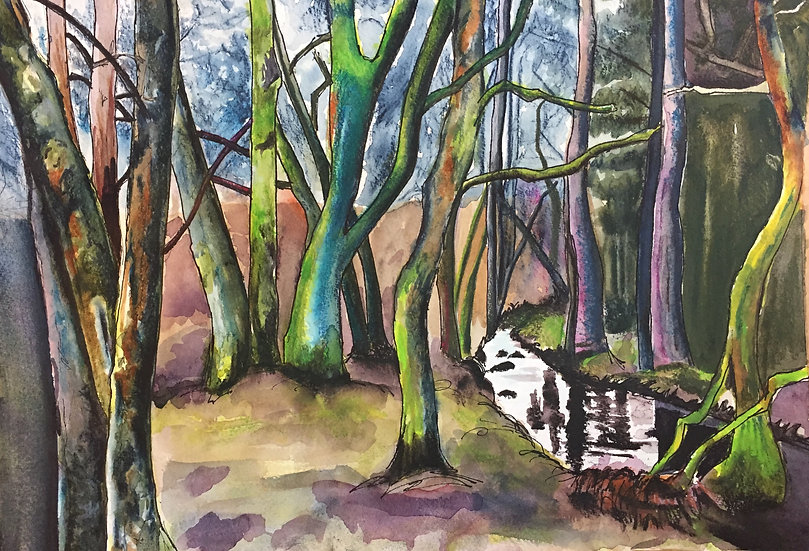 Trees on the South Tyne 1