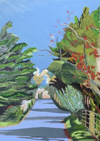 The Road to Brampton 1 by Helen Johnson
