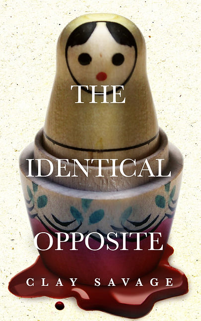 The Identical Opposite - eBook.jpg