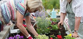 Our raised planters are ideal for community gardens.