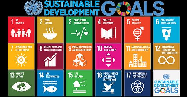 17 UN Global Goals