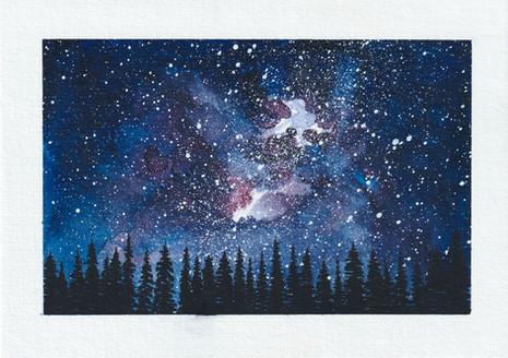 Forest postcard