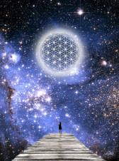 UNIVERSAL FLOWER OF LIFE