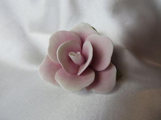 Pretty Pink Porcelain Rose